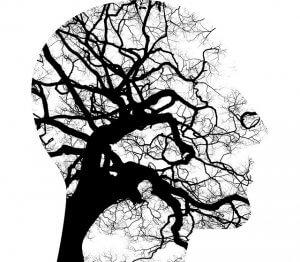 illustration of the mind